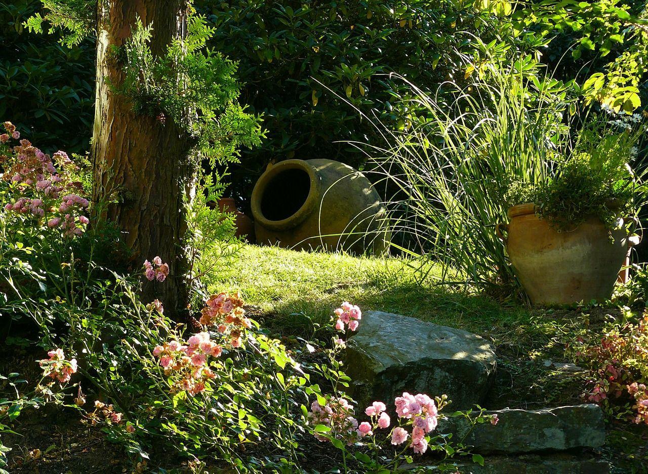 Jak zaprojektować nowoczesny ogród